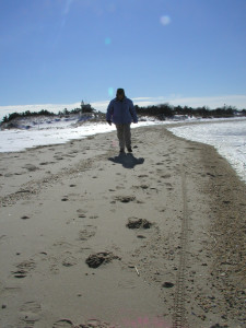 The beach along Delaware Bay at Cape Henlopen State Park (Photo: DFN)