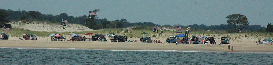 Surf-fishing vehicles line up at Cape Henlopen State Park last summer. (Photo: Delaware Free News)