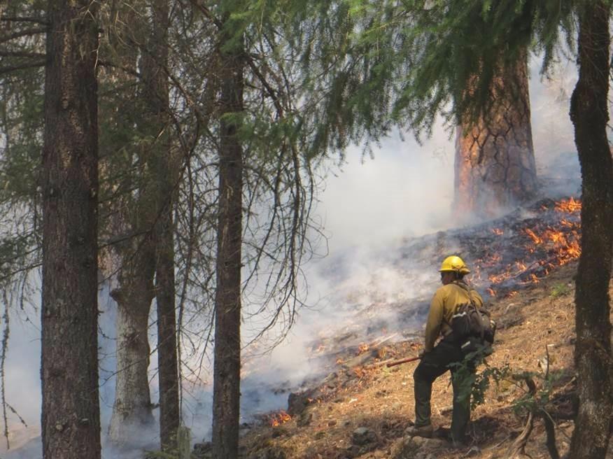 California fire 1