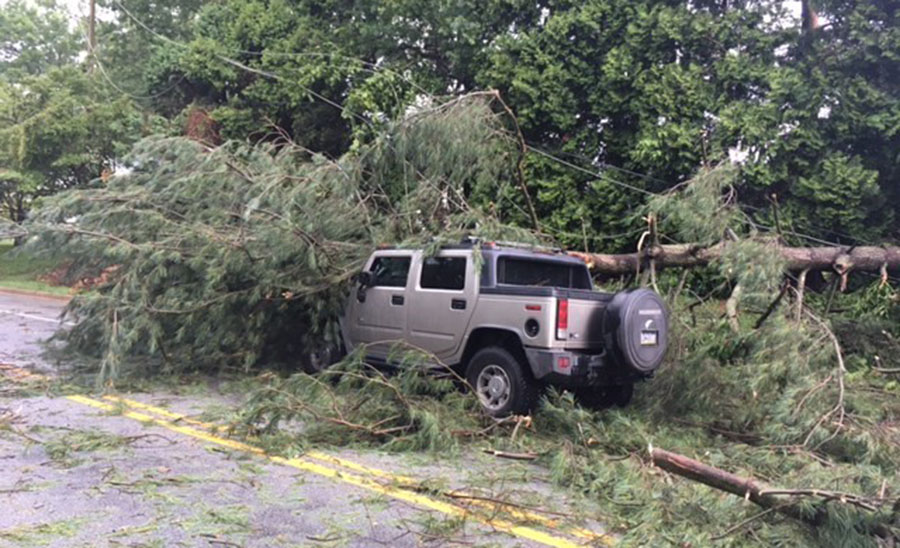 Large tree fell onto Hummer SUV in 400 block of McKennans Church Road. (Photo: Delaware Free News)