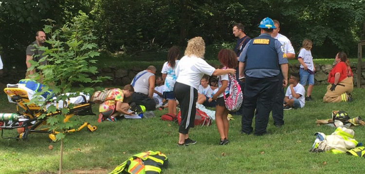 A dozen campers were stung by insects at Rockwood Museum & Park. (Photo: Delaware Free News)