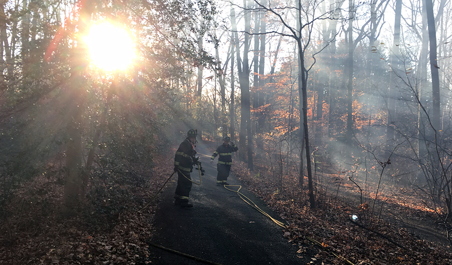 Firefighters work to put out woods fire at Mount Cuba Center. (Photo: Delaware Free News)