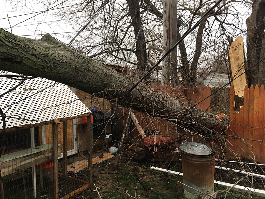 60 Mph Winds Cause Damage Injury Power Outages In