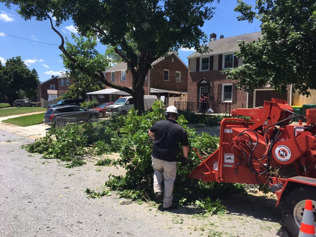 Storm Causes Damage In New Castle County Delaware Free News
