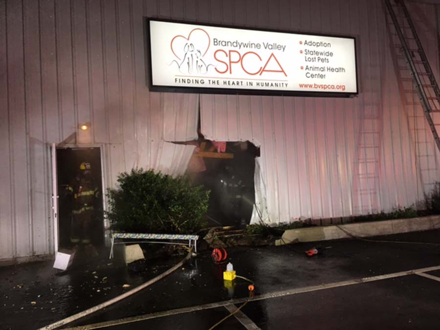 BVSPCA New Castle Fire 6 (002)