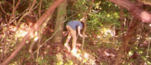 Milford police released image of suspect in theft of trail camera.
